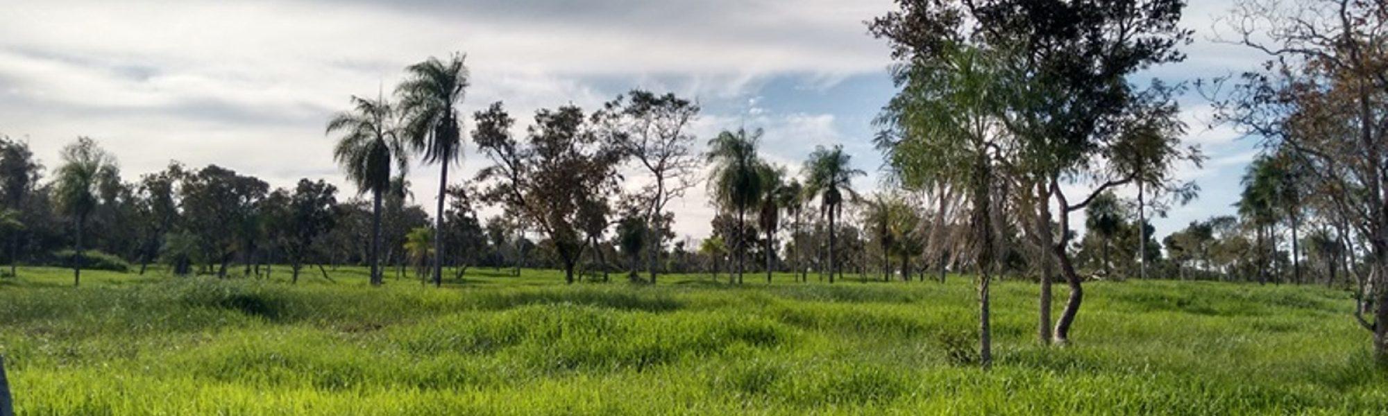 Fazenda em Bonito MS com 1.400 hectares