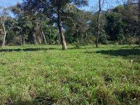 Fazenda em Aquidauana ms