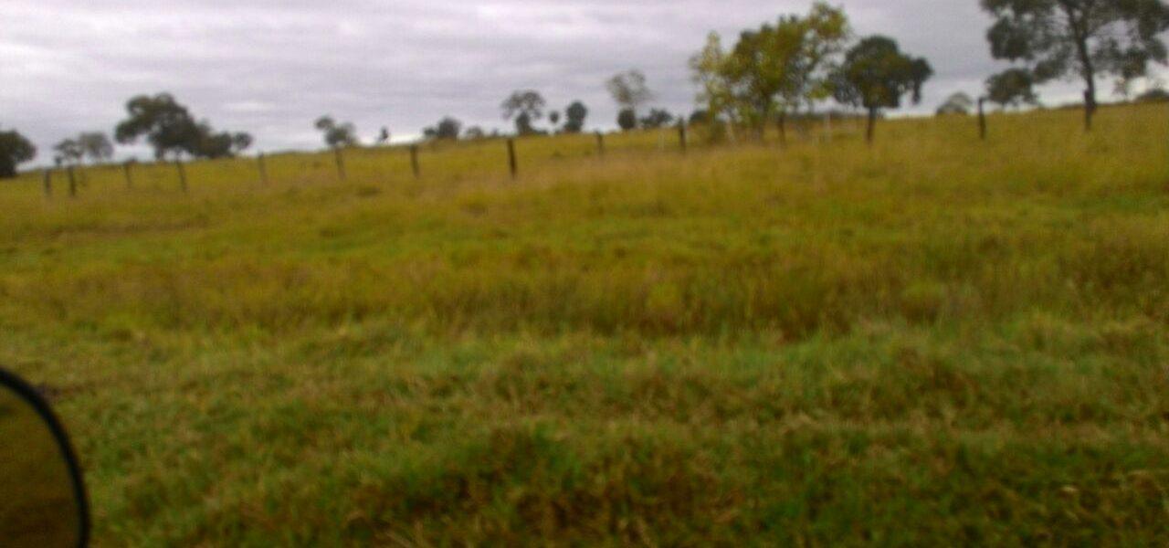 Fazenda em Bodoquena MS com 230 Hectares